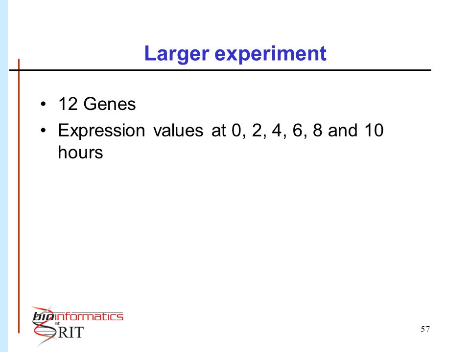 57 Larger experiment 12 Genes Expression values at 0, 2, 4, 6, 8 and 10 hours