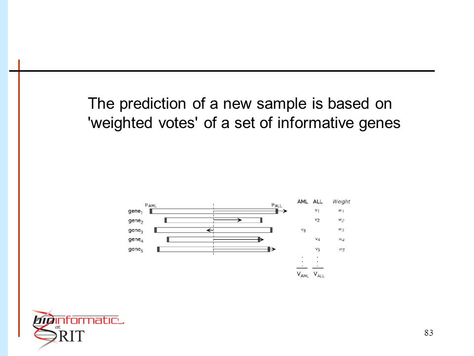 83 The prediction of a new sample is based on weighted votes of a set of informative genes