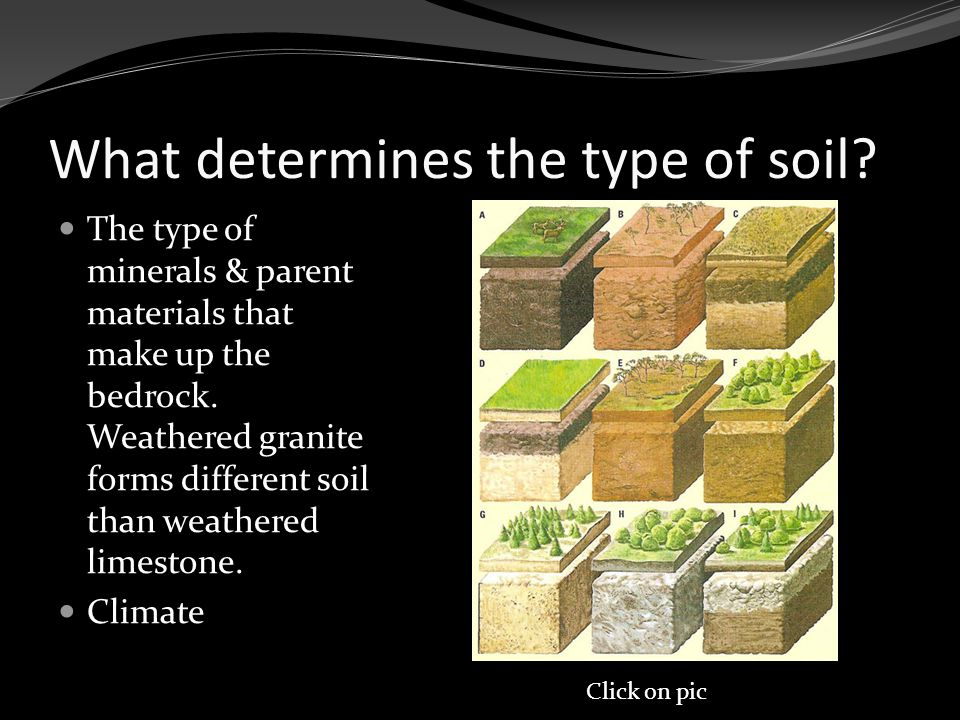 What determines the type of soil. The type of minerals & parent materials that make up the bedrock.