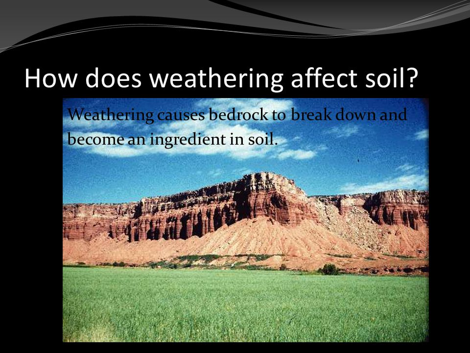 Soil Profile O Horizon: thin coating or ORGANIC material (loose leaves, decaying plants/animals) A Horizon: topsoil, a mixture of humus & rock particles.