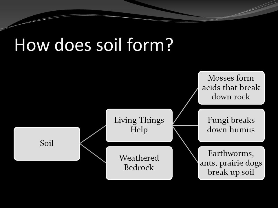 How does soil form.