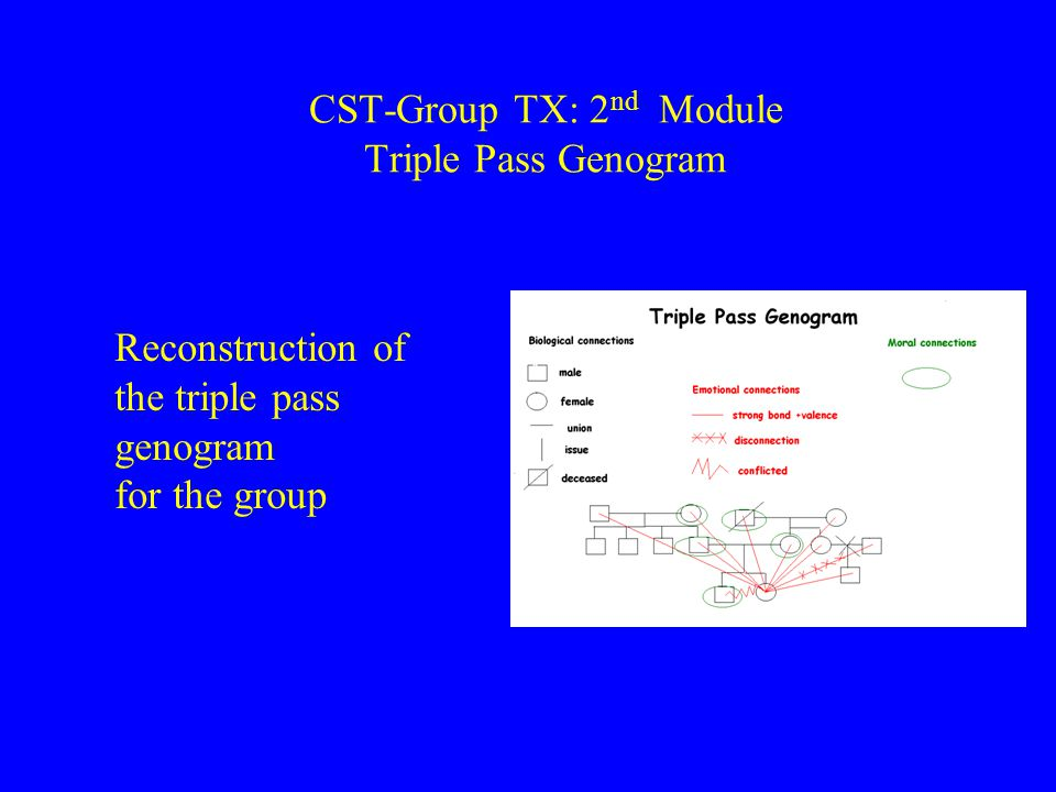 CST-Group TX: 2 nd Module Triple Pass Genogram Reconstruction of the triple pass genogram for the group