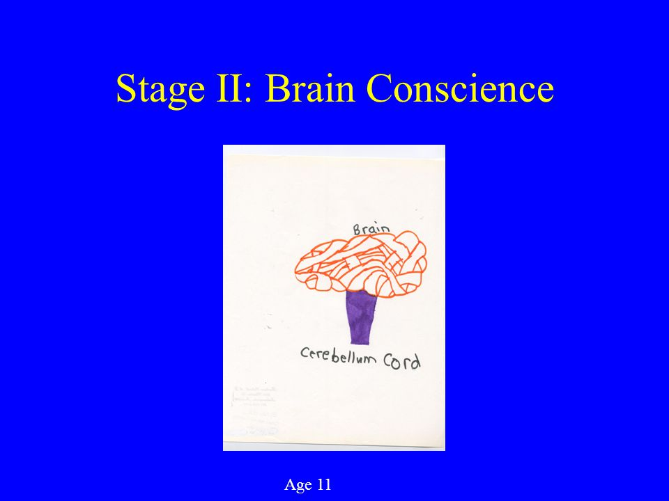 Stage II: Brain Conscience Age 11