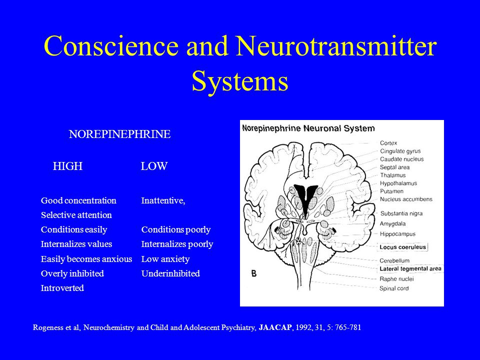 Conscience and Neurotransmitter Systems Good concentration Inattentive, Selective attention Conditions easily Conditions poorly Internalizes values Internalizes poorly Easily becomes anxious Low anxiety Overly inhibited Underinhibited Introverted NOREPINEPHRINE HIGHLOW Rogeness et al, Neurochemistry and Child and Adolescent Psychiatry, JAACAP, 1992, 31, 5: 765-781