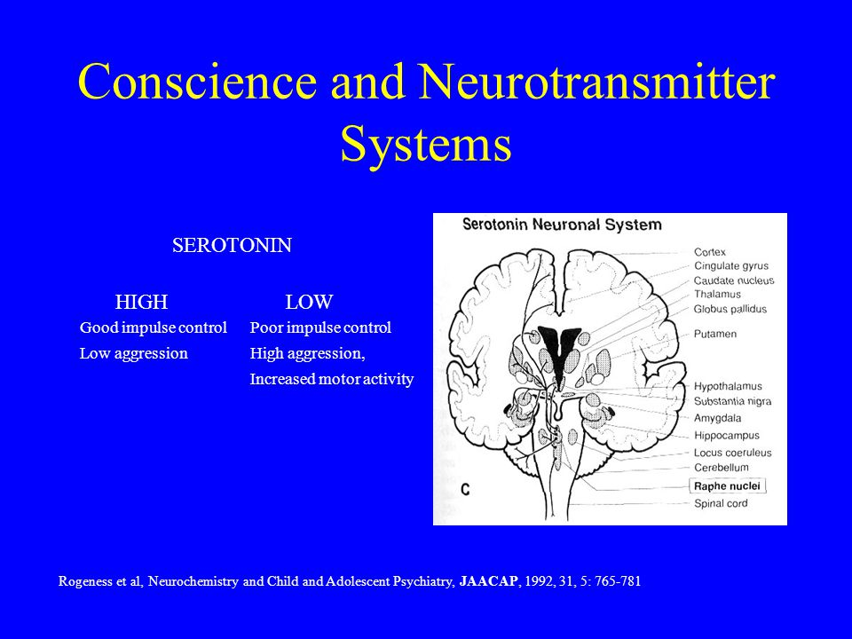 Conscience and Neurotransmitter Systems Good impulse controlPoor impulse control Low aggressionHigh aggression, Increased motor activity HIGH LOW Roge
