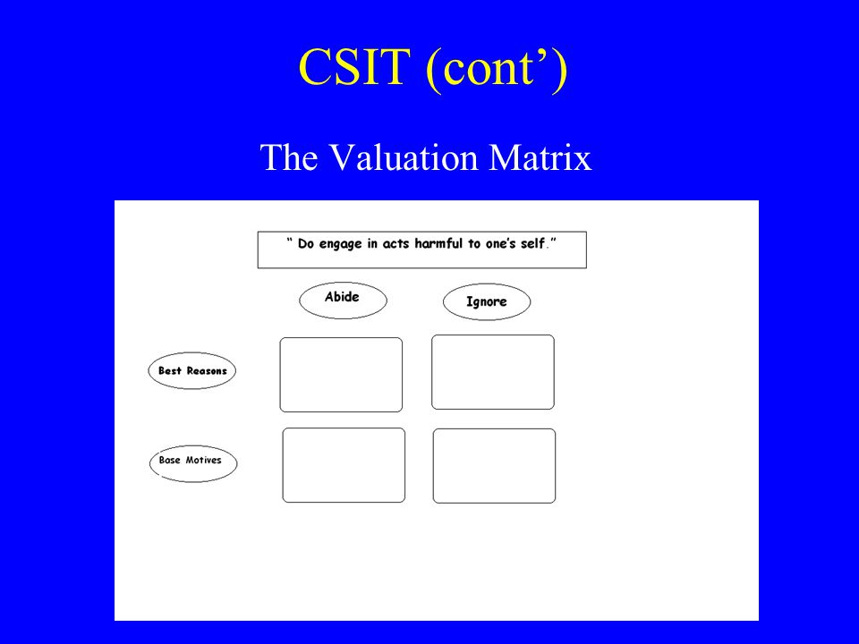 CSIT (cont') The Valuation Matrix