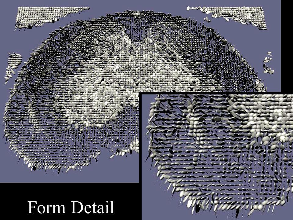 Form Detail