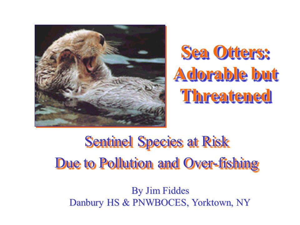 Otters & Diseases...