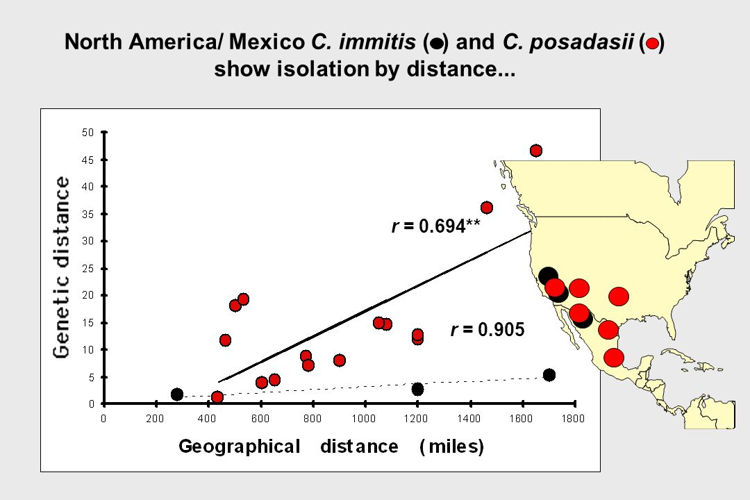 North America/ Mexico C. immitis ( ) and C. posadasii ( ) show isolation by distance... r = 0.905 r = 0.694**