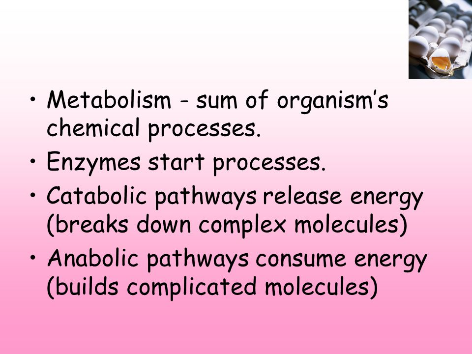 Metabolism - sum of organism's chemical processes.