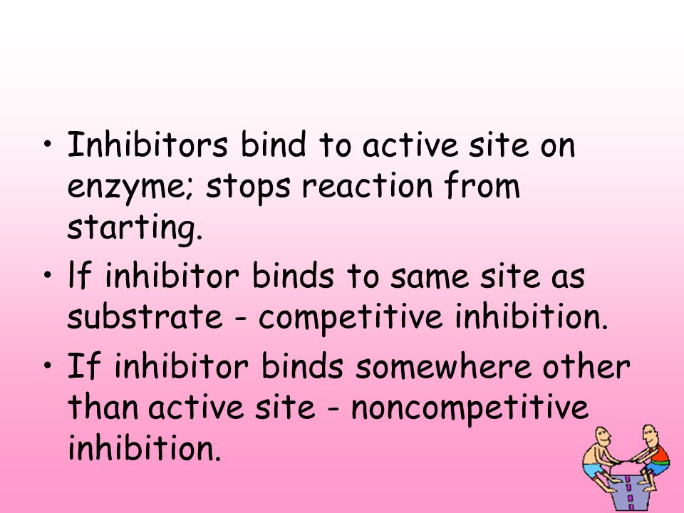 Inhibitors bind to active site on enzyme; stops reaction from starting.