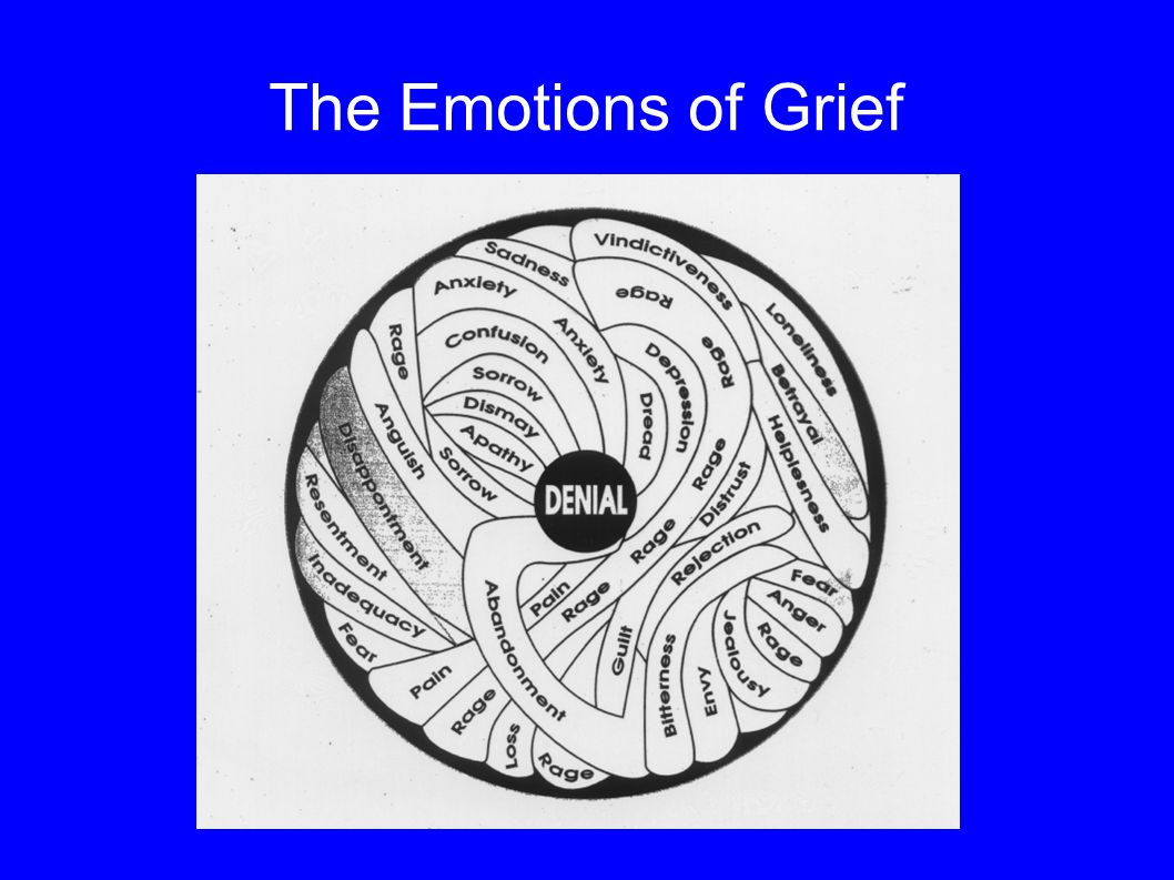 The Emotions of Grief