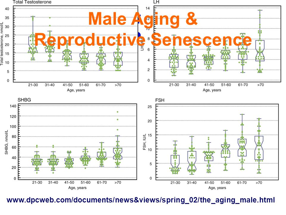 Male Serum Hormone Age Profiles www.dpcweb.com/documents/news&views/spring_02/the_aging_male.html Male Aging & Reproductive Senescence