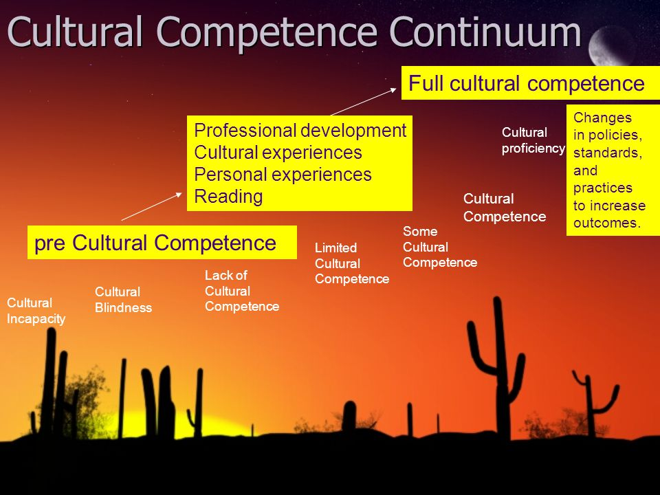 Cultural Competence Continuum Full cultural competence Lack of Cultural Competence Limited Cultural Competence Some Cultural Competence Cultural proficiency Cultural Incapacity Cultural Blindness Changes in policies, standards, and practices to increase outcomes.