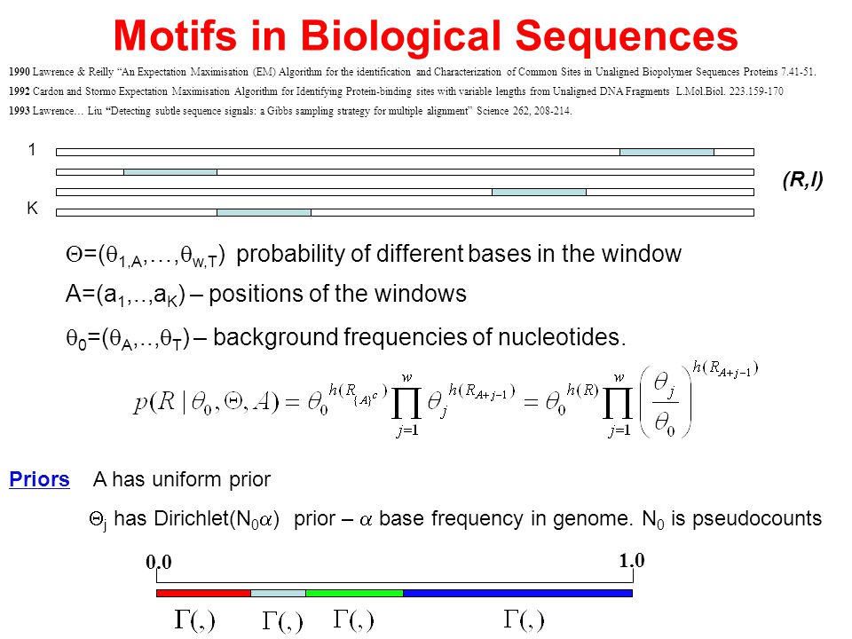 "Motifs in Biological Sequences 1990 Lawrence & Reilly ""An Expectation Maximisation (EM) Algorithm for the identification and Characterization of Commo"