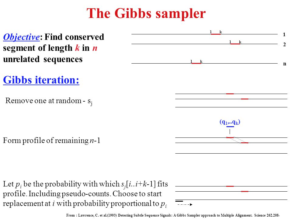 The Gibbs sampler Objective: Find conserved segment of length k in n unrelated sequences n 2 1 1k 1k 1k Gibbs iteration: Remove one at random - s j Fo