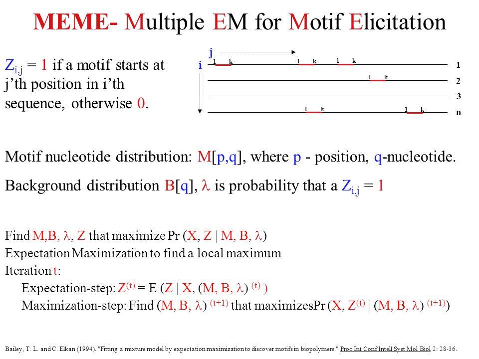 MEME- Multiple EM for Motif Elicitation n 2 1 1k 1k 1k 1k 1k 1k 3 Z i,j = 1 if a motif starts at j'th position in i'th sequence, otherwise 0.