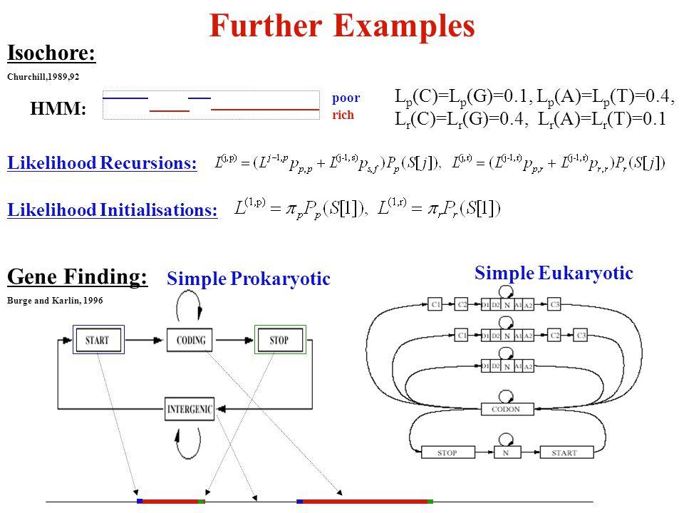 Further Examples Simple Prokaryotic Simple Eukaryotic Gene Finding: Burge and Karlin, 1996 Isochore: Churchill,1989,92 Likelihood Recursions: Likelihood Initialisations: poor rich HMM: L p (C)=L p (G)=0.1, L p (A)=L p (T)=0.4, L r (C)=L r (G)=0.4, L r (A)=L r (T)=0.1