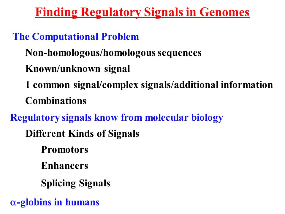Finding Regulatory Signals in Genomes Regulatory signals know from molecular biology Different Kinds of Signals Promotors Enhancers Splicing Signals T