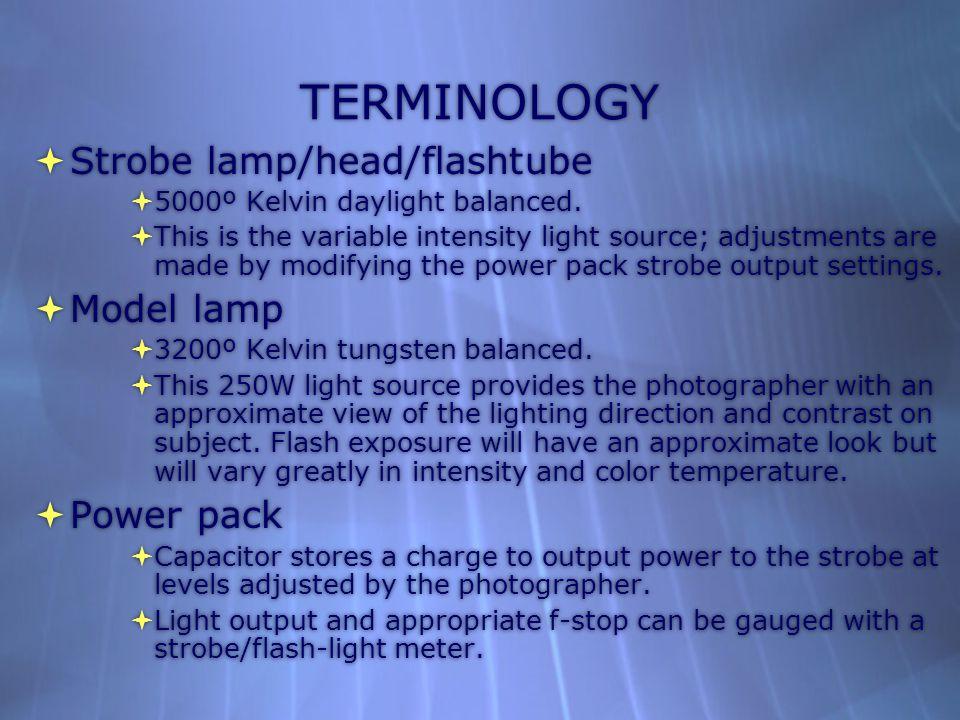 TERMINOLOGY  Strobe lamp/head/flashtube  5000º Kelvin daylight balanced.