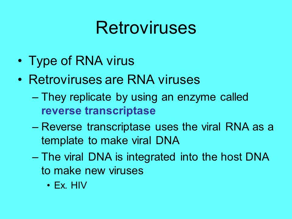Retroviruses Type of RNA virus Retroviruses are RNA viruses –They replicate by using an enzyme called reverse transcriptase –Reverse transcriptase use
