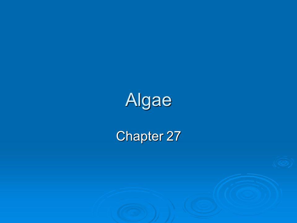 Algae Chapter 27