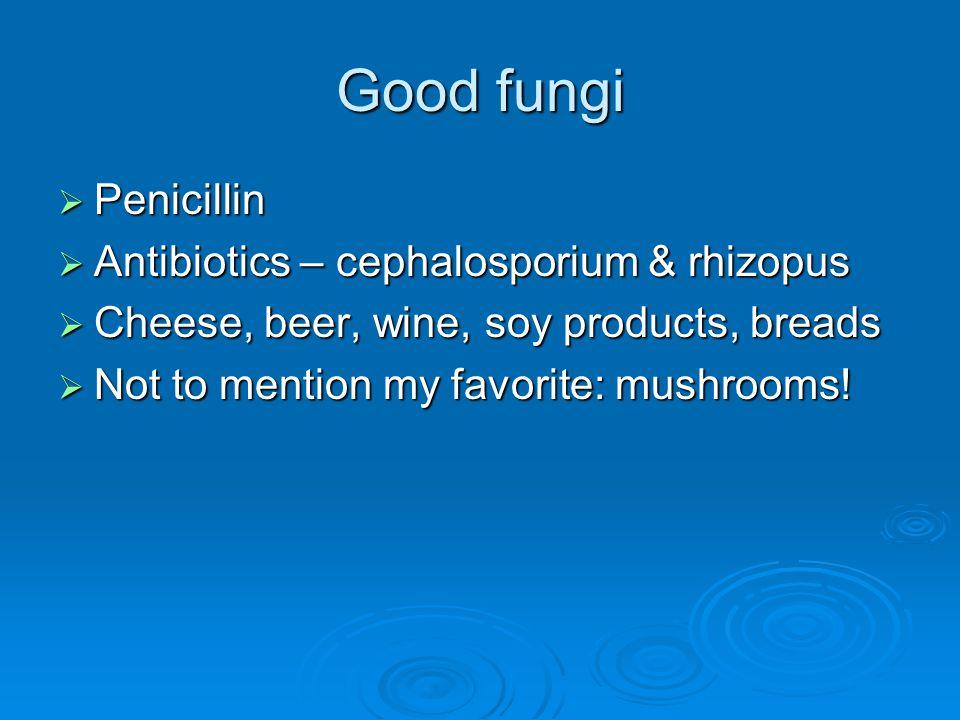 Good fungi  Penicillin  Antibiotics – cephalosporium & rhizopus  Cheese, beer, wine, soy products, breads  Not to mention my favorite: mushrooms!