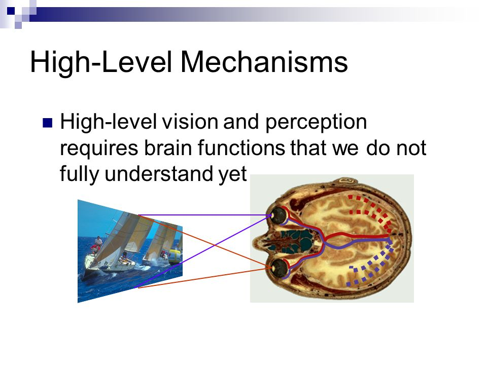 High-Level Mechanisms High-level vision and perception requires brain functions that we do not fully understand yet