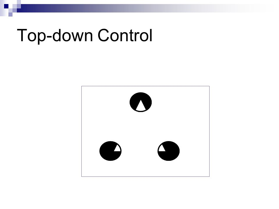 Visual Completion: Top-down Control