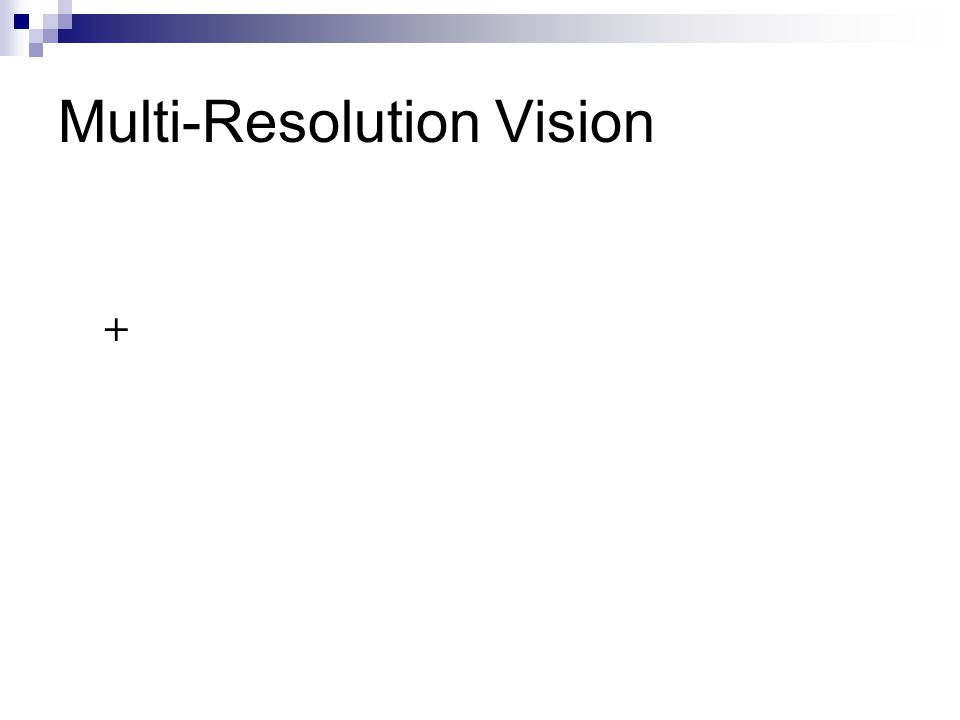 Multi-Resolution Vision +