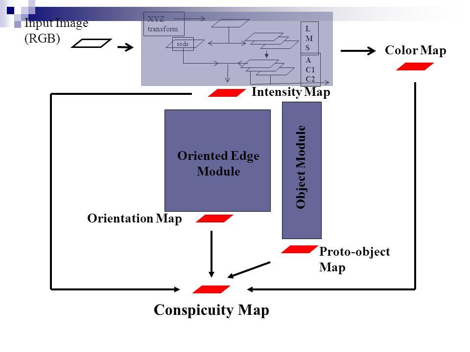 Proto-object Map G0 G45G90 G135 XYZ transform rods Orientation Map LMSLMS A C1 C2 Intensity Map Input Image (RGB) Conspicuity Map Color Map Oriented Edge Module Object Module