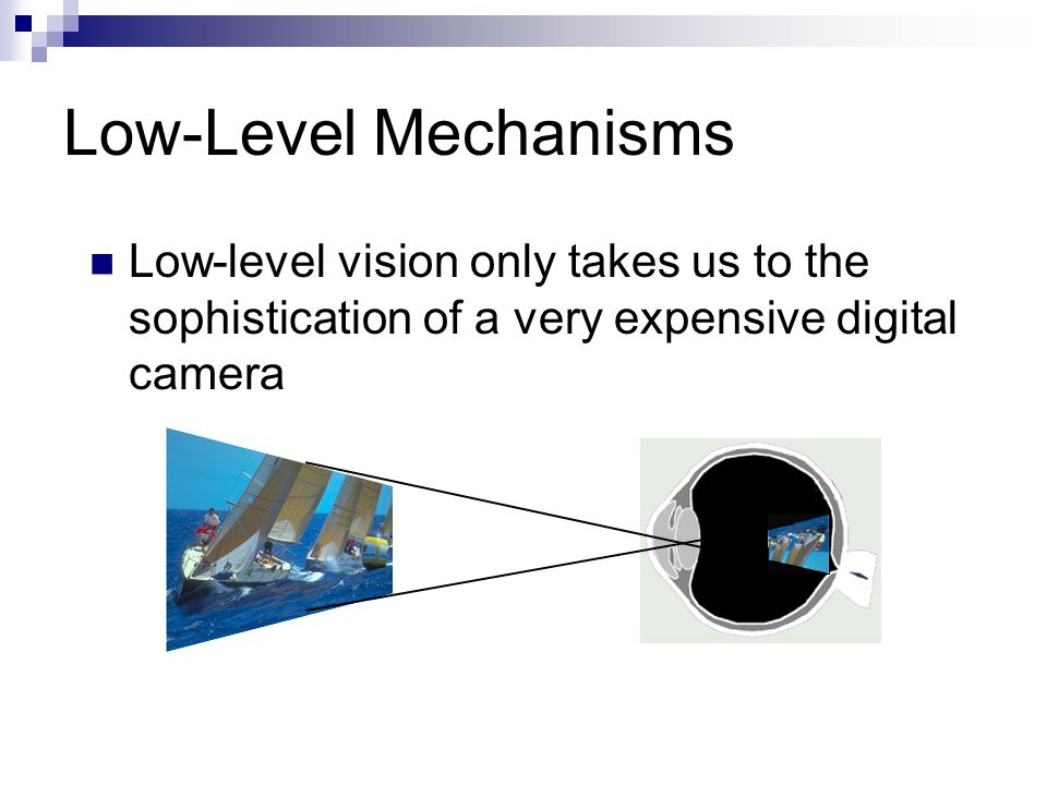 Low-Level Mechanisms Low-level vision only takes us to the sophistication of a very expensive digital camera