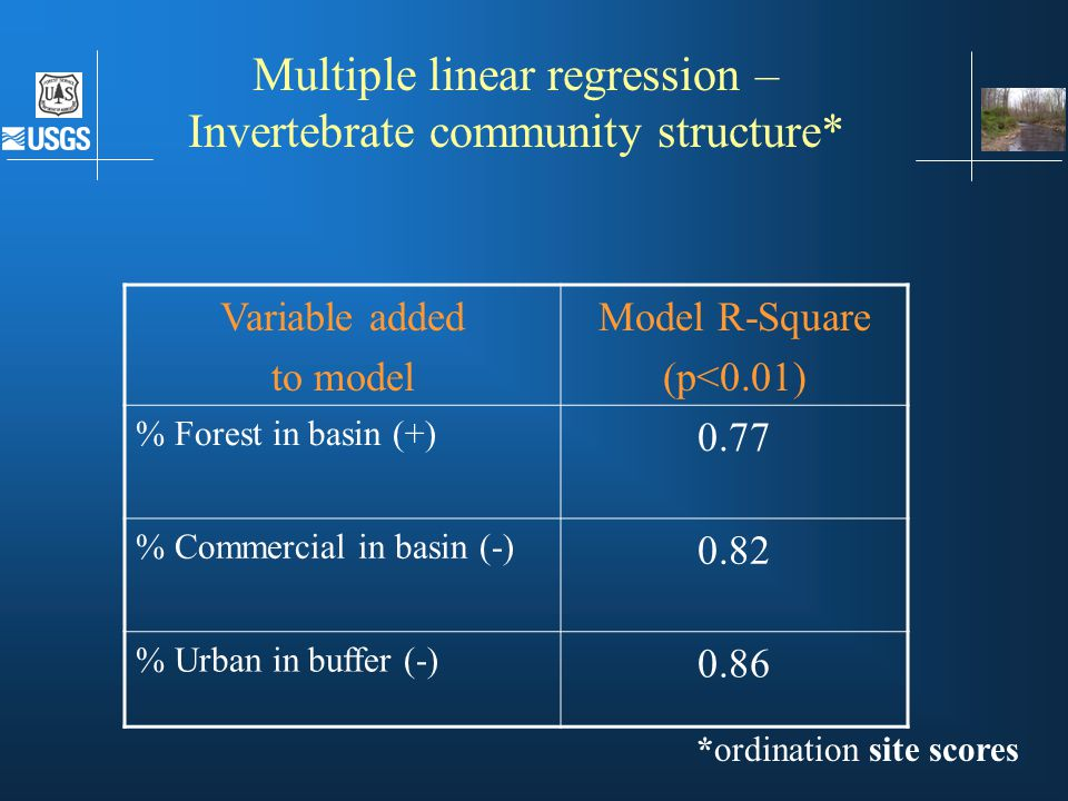 Multiple linear regression – Invertebrate community structure* Variable added to model Model R-Square (p<0.01) % Forest in basin (+) 0.77 % Commercial in basin (-) 0.82 % Urban in buffer (-) 0.86 *ordination site scores MLR - invertebrates