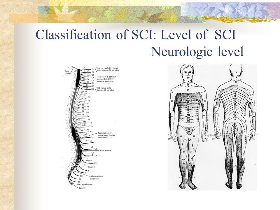 Classification of SCI: Level of SCI Neurologic level