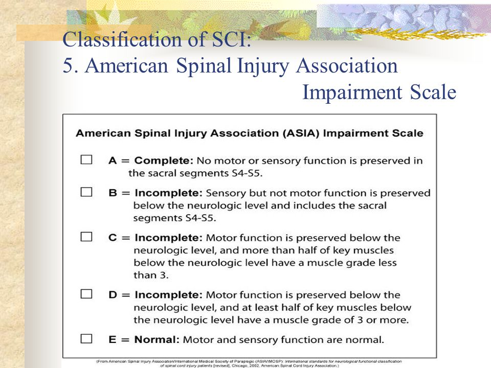 Classification of SCI: 5. American Spinal Injury Association Impairment Scale