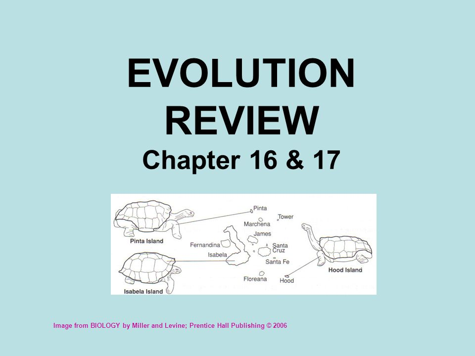 Traits controlled by two or more genes Polygenic trait Process by which related organisms evolve differences when they are isolated in different environments Divergent evolution OR Adaptive radiation