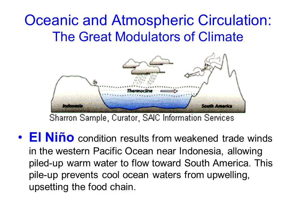 Oceanic and Atmospheric Circulation: The Great Modulators of Climate El Niño condition results from weakened trade winds in the western Pacific Ocean