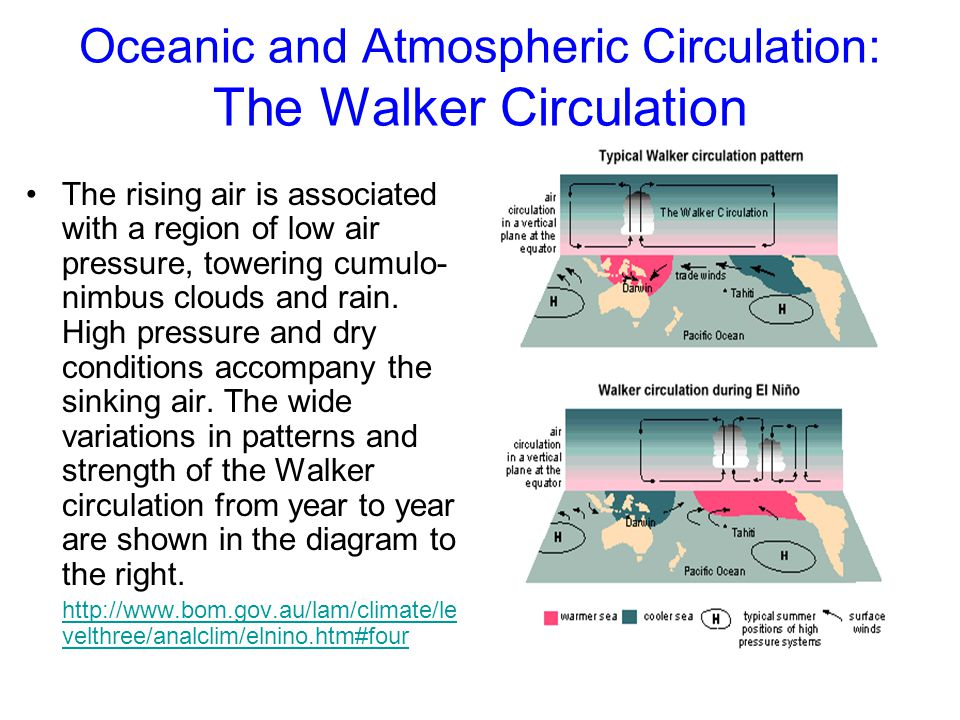 Oceanic and Atmospheric Circulation: The Walker Circulation The rising air is associated with a region of low air pressure, towering cumulo- nimbus cl