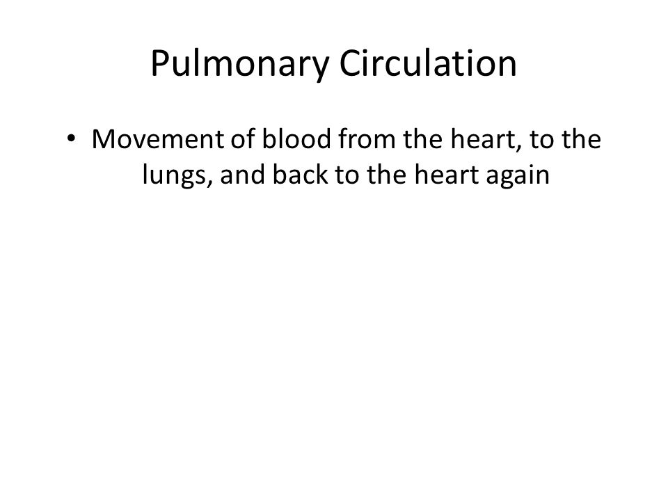Pulmonary Circulation Movement of blood from the heart, to the lungs, and back to the heart again