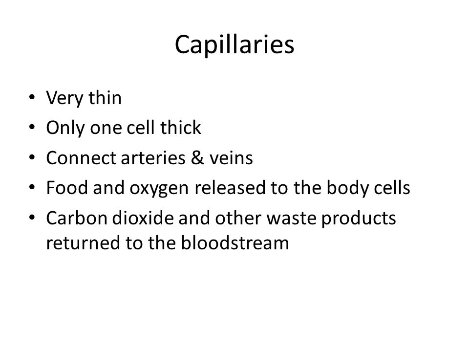 Capillaries Very thin Only one cell thick Connect arteries & veins Food and oxygen released to the body cells Carbon dioxide and other waste products