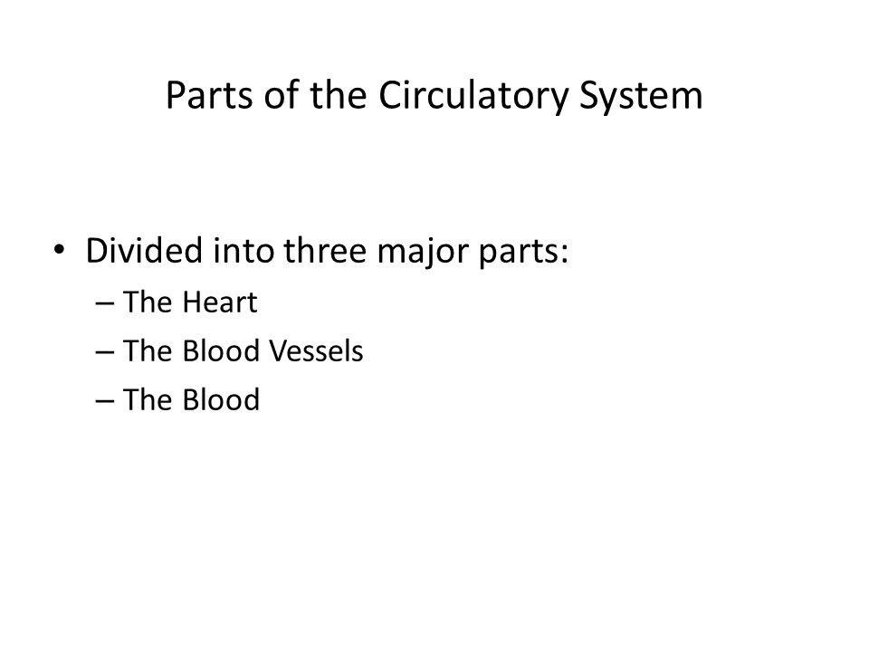 Parts of the Circulatory System Divided into three major parts: – The Heart – The Blood Vessels – The Blood