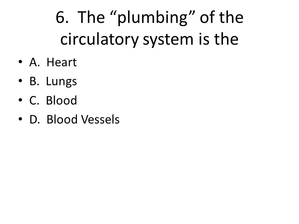 "6. The ""plumbing"" of the circulatory system is the A. Heart B. Lungs C. Blood D. Blood Vessels"