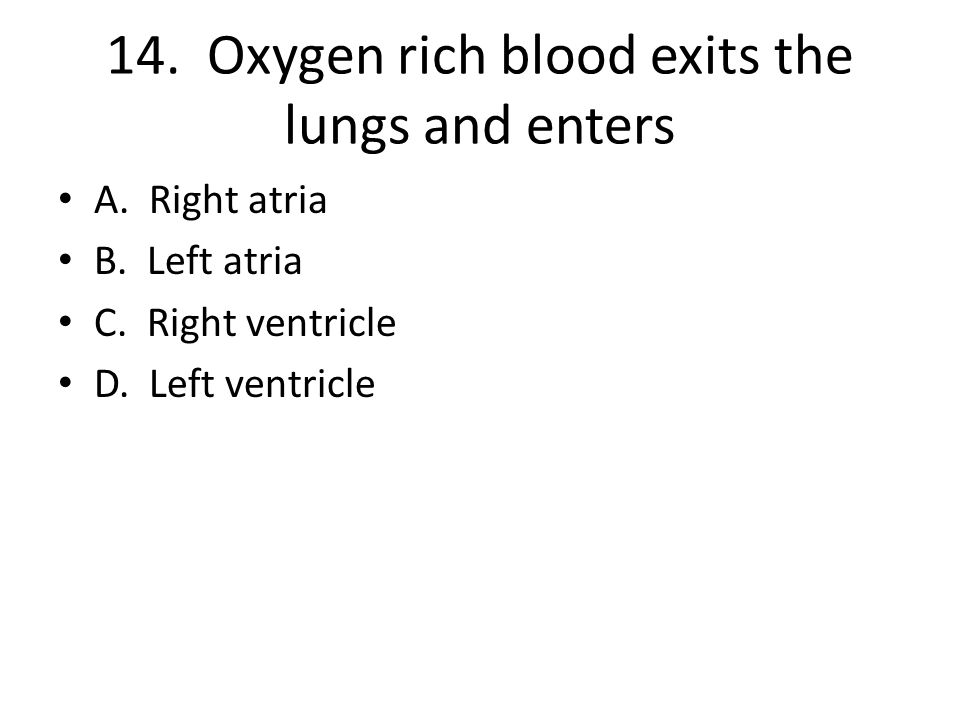 14. Oxygen rich blood exits the lungs and enters A. Right atria B. Left atria C. Right ventricle D. Left ventricle