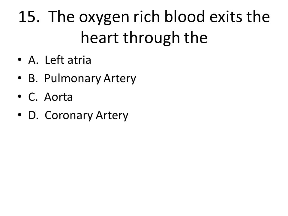 15.The oxygen rich blood exits the heart through the A.