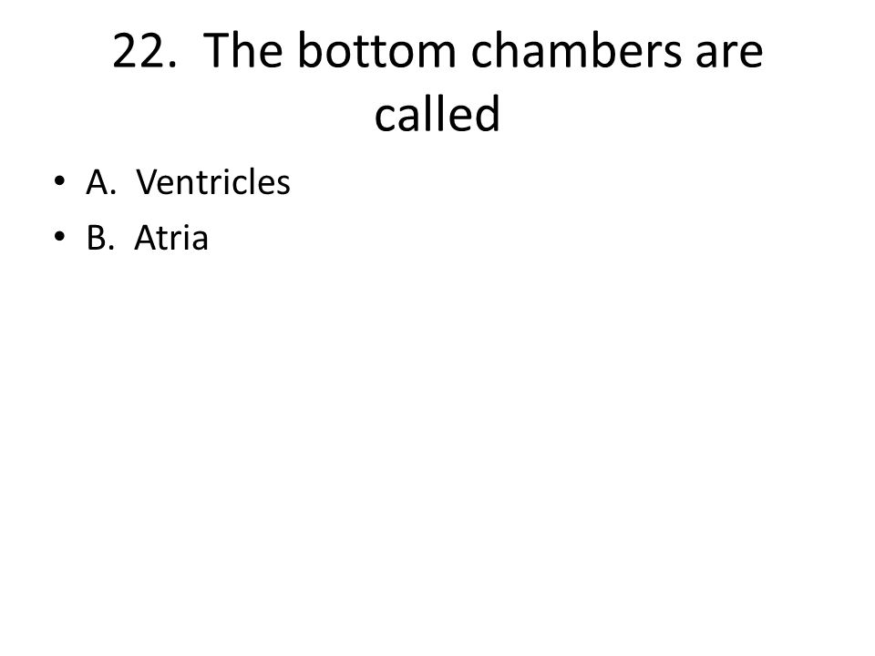 22. The bottom chambers are called A. Ventricles B. Atria