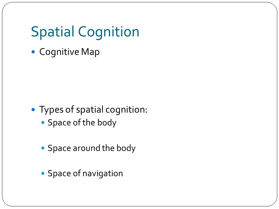 Spatial Cognition Cognitive Map Types of spatial cognition: Space of the body Space around the body Space of navigation