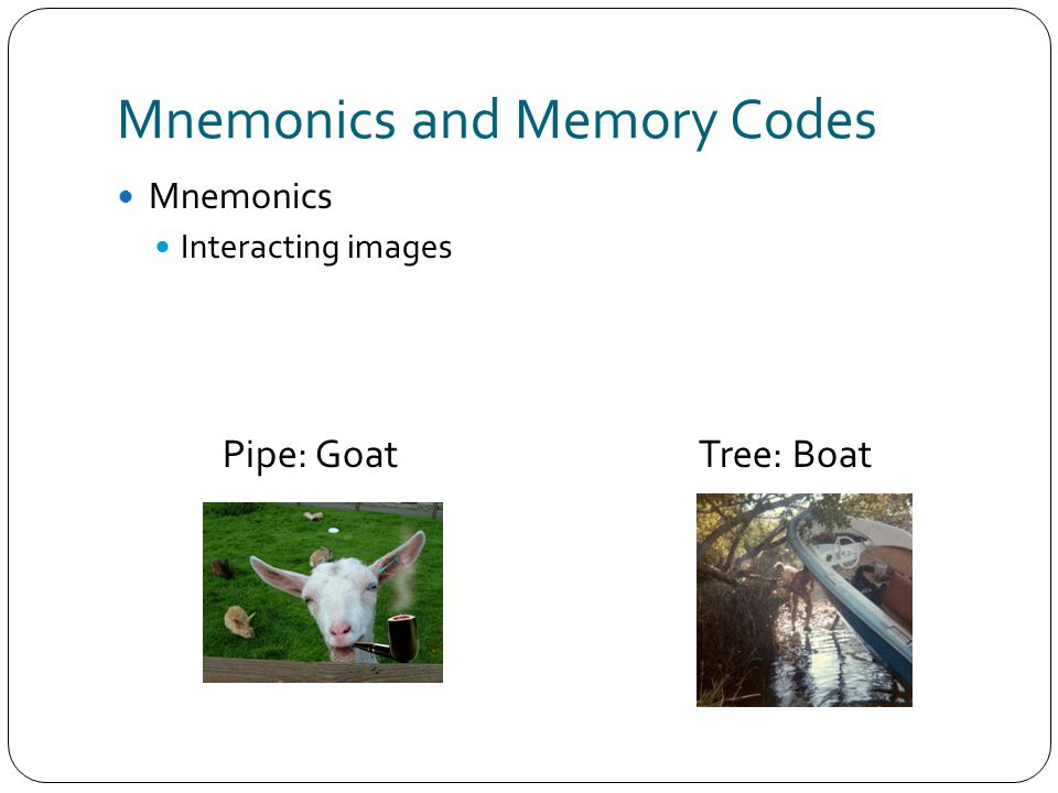 Mnemonics and Memory Codes Mnemonics Interacting images Pipe: GoatTree: Boat