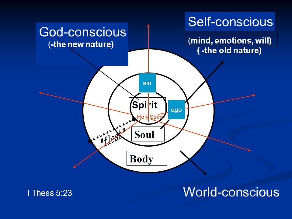 Body Soul Spirit (mind, emotions, will) ( -the old nature) Self-conscious World-conscious God-conscious (-the new nature) Holy Spirit I Thess 5:23 ego sin