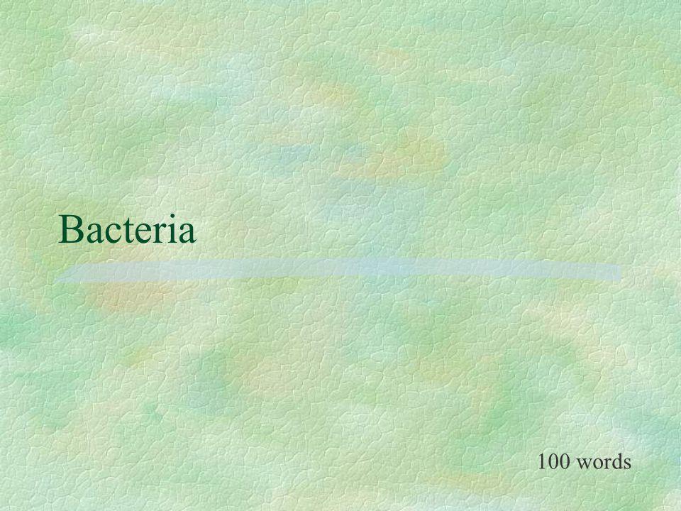 Bacteria 100 words
