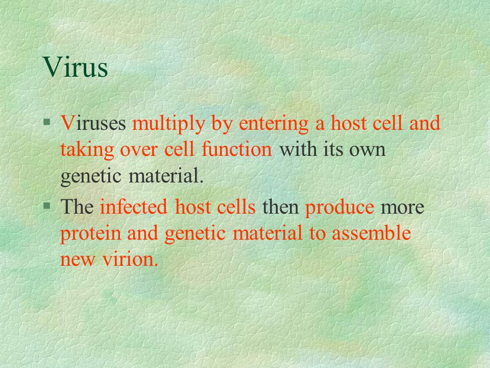 Virus §Viruses multiply by entering a host cell and taking over cell function with its own genetic material.